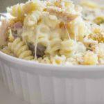 Cheesy Chicken Pasta Recipe.